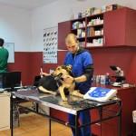 veterinar sector 3 titan tazy vet