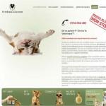clinica veterinara non stop mosilor